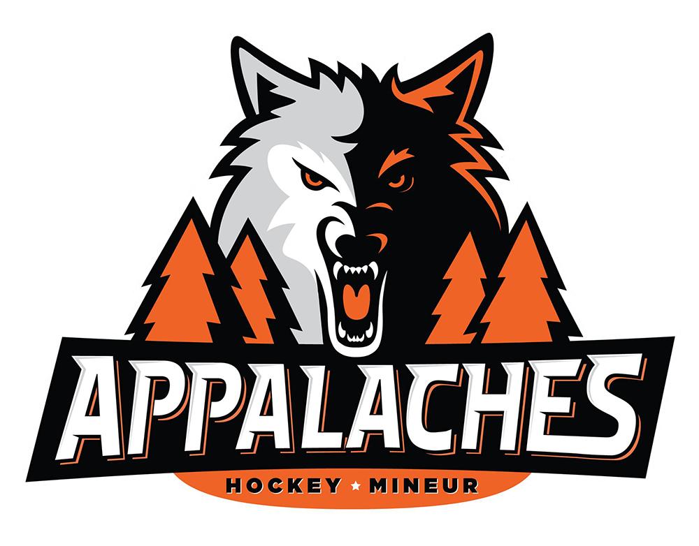 Appalaches hockey mineur